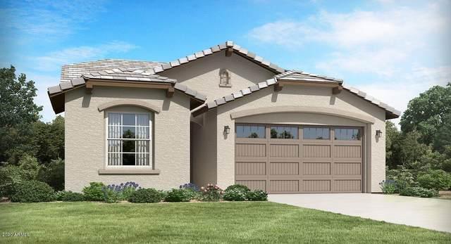 11657 N 187TH Drive, Surprise, AZ 85388 (MLS #6073985) :: The Garcia Group