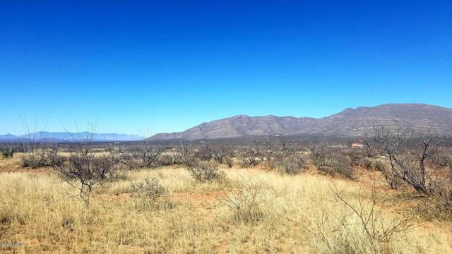 Lot 47 S Wheat Street, Tombstone, AZ 85638 (MLS #6074024) :: Conway Real Estate