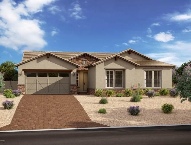 4305 S Apollo, Mesa, AZ 85212 (MLS #6074031) :: Balboa Realty