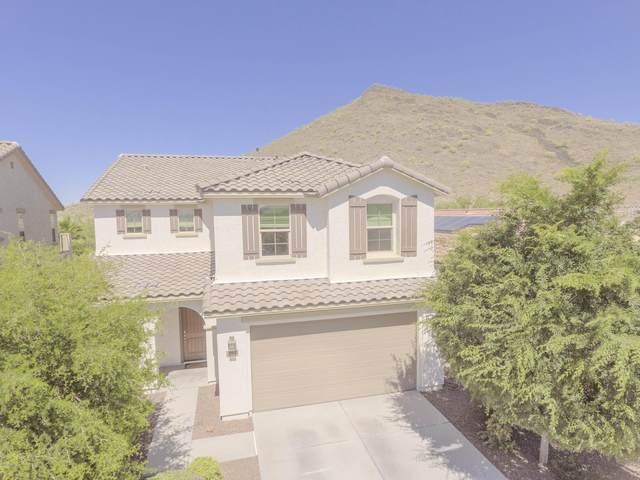 25122 N 56TH Avenue, Phoenix, AZ 85083 (MLS #6074039) :: Maison DeBlanc Real Estate