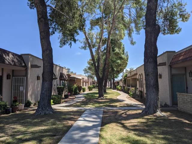 929 N Cherry, Mesa, AZ 85201 (MLS #6074075) :: The Property Partners at eXp Realty
