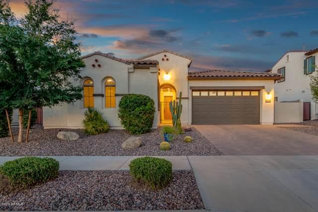 4101 S Gemstone Drive, Chandler, AZ 85249 (MLS #6074130) :: Homehelper Consultants
