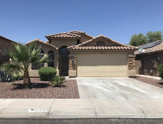 11356 W Davis Lane, Avondale, AZ 85323 (MLS #6074167) :: The Daniel Montez Real Estate Group