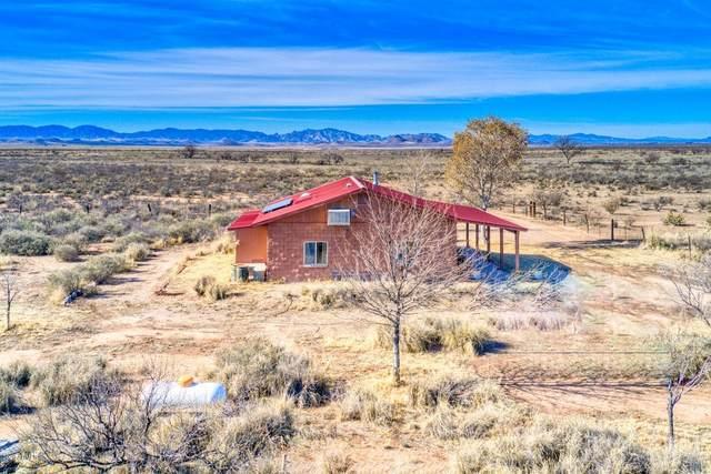 11500 S Duck Tank Road, Pearce, AZ 85625 (MLS #6074233) :: Yost Realty Group at RE/MAX Casa Grande