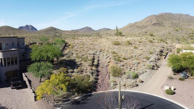 3010 W Feather Sound Drive, Anthem, AZ 85086 (MLS #6074241) :: Conway Real Estate