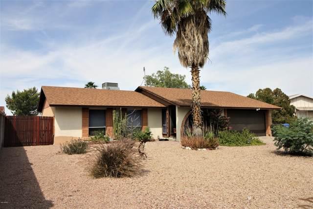 20426 N 17TH Avenue, Phoenix, AZ 85027 (MLS #6074506) :: Lifestyle Partners Team