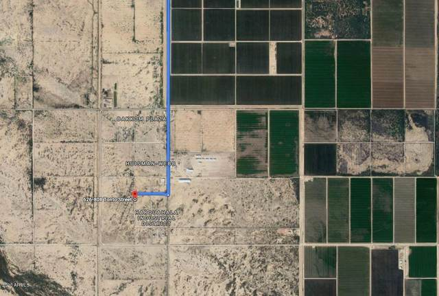 515XX W Tonto Street, Tonopah, AZ 85354 (MLS #6074530) :: The Laughton Team
