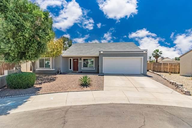 19009 N 45th Drive, Glendale, AZ 85308 (MLS #6074533) :: Conway Real Estate