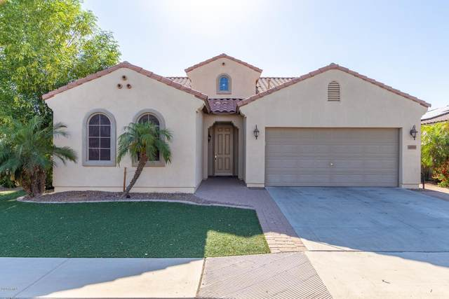 4090 S Big Horn Place, Chandler, AZ 85249 (MLS #6074568) :: Lifestyle Partners Team