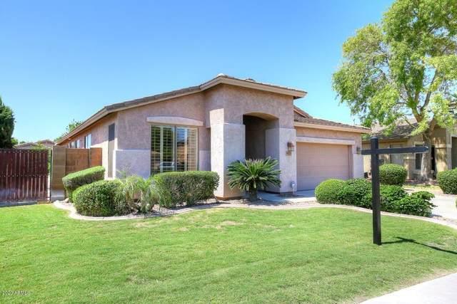 9213 W Potter Drive, Peoria, AZ 85382 (MLS #6074631) :: The W Group