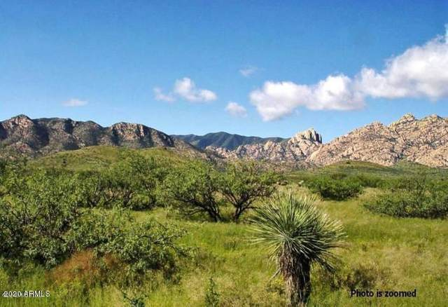 24 +/- Acre On Ironwood Road, Cochise, AZ 85606 (MLS #6074676) :: Service First Realty