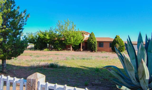 3325 W Lariat Lane, Douglas, AZ 85607 (MLS #6074824) :: Devor Real Estate Associates