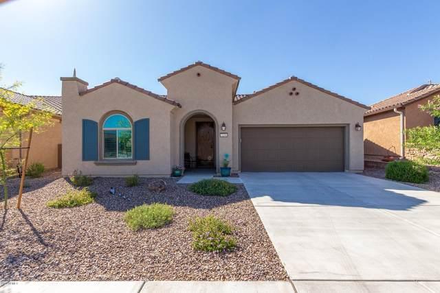 7136 W Deer Creek Trail, Marana, AZ 85658 (MLS #6074896) :: Revelation Real Estate