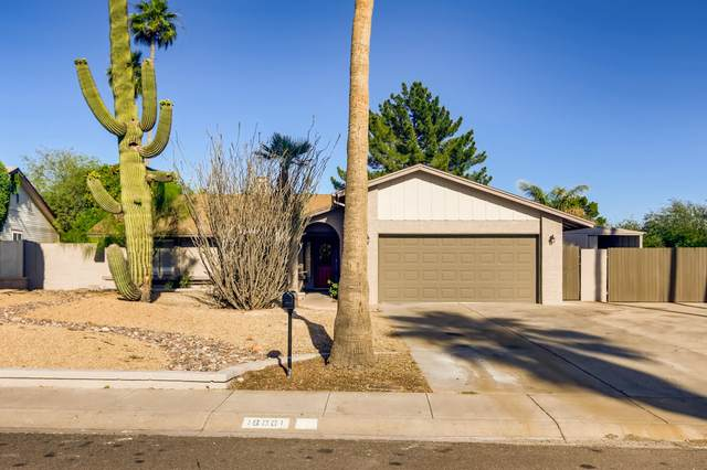 16001 N 33RD Avenue, Phoenix, AZ 85053 (MLS #6075216) :: Revelation Real Estate