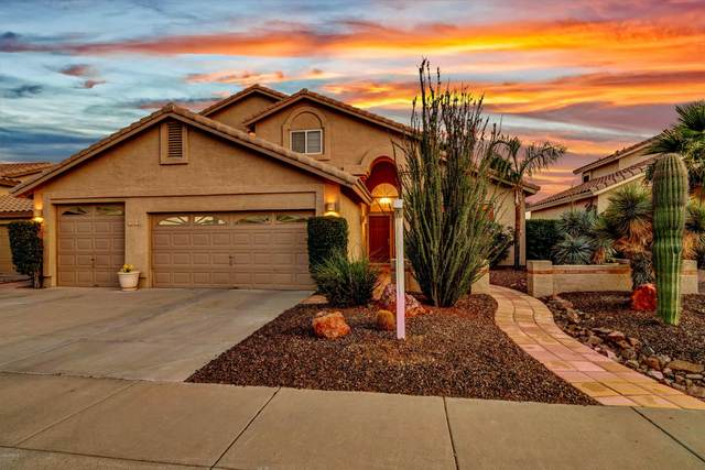1415 W Mountain Sky Avenue, Phoenix, AZ 85045 (MLS #6075238) :: The Laughton Team