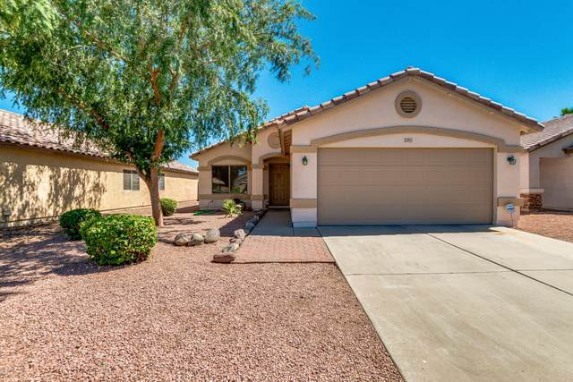 14951 W Maui Lane, Surprise, AZ 85379 (MLS #6075387) :: Revelation Real Estate