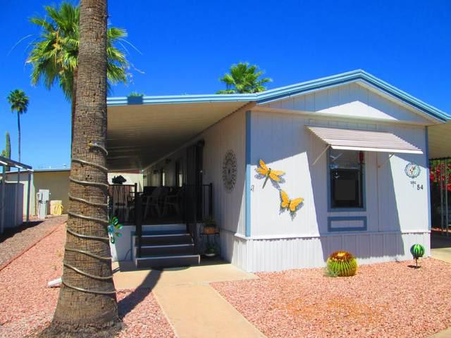 11425 E University Drive, Apache Junction, AZ 85120 (MLS #6075389) :: Conway Real Estate