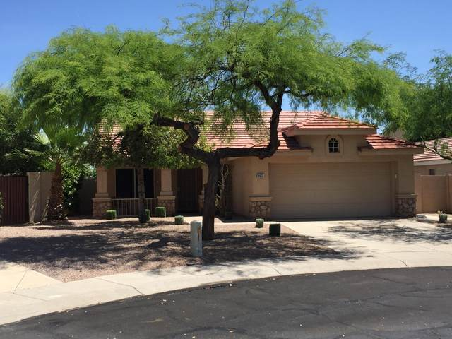 16633 S 29TH Street, Phoenix, AZ 85048 (MLS #6075407) :: Revelation Real Estate