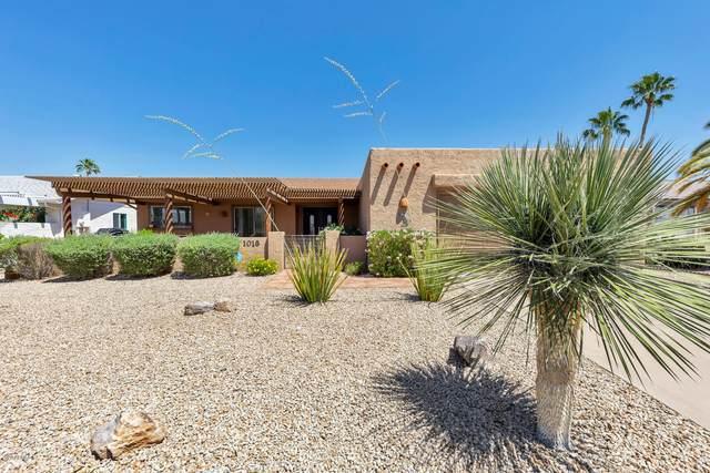 1018 Leisure World, Mesa, AZ 85206 (MLS #6075461) :: Lux Home Group at  Keller Williams Realty Phoenix