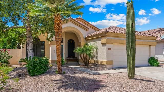 20428 N 39TH Drive, Glendale, AZ 85308 (MLS #6075462) :: Nate Martinez Team
