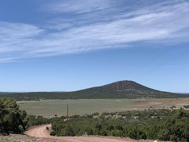 32 County Road 8145, Vernon, AZ 85940 (MLS #6075495) :: Klaus Team Real Estate Solutions