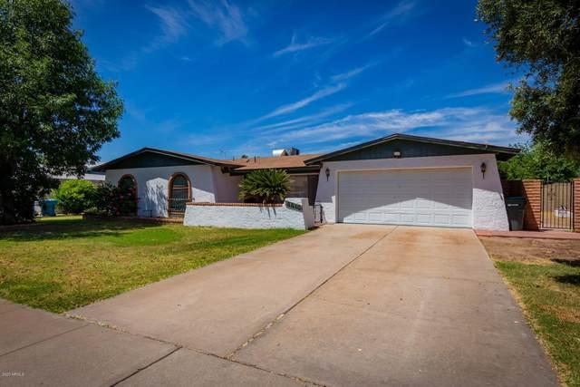8610 N 41ST Drive, Phoenix, AZ 85051 (MLS #6075497) :: Nate Martinez Team
