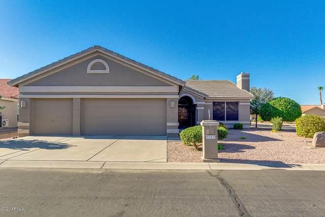 9103 E Coopers Hawk Drive, Sun Lakes, AZ 85248 (MLS #6075530) :: The Carin Nguyen Team