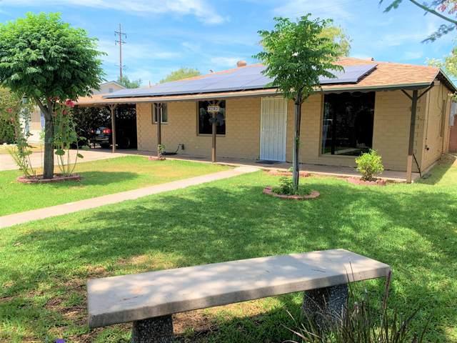 3240 E Mckinley Street, Phoenix, AZ 85008 (MLS #6075559) :: Klaus Team Real Estate Solutions