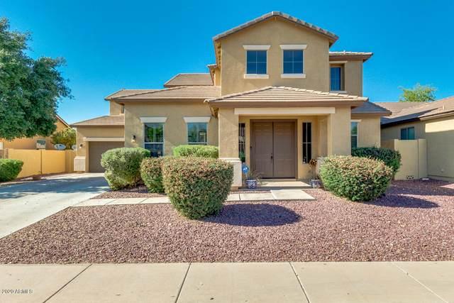 41978 W Monteverde Court, Maricopa, AZ 85138 (MLS #6075573) :: neXGen Real Estate