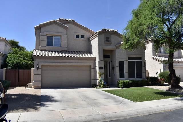 631 W Kent Place, Chandler, AZ 85225 (MLS #6075741) :: Klaus Team Real Estate Solutions