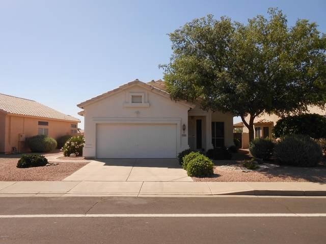 18334 N Coyote Lakes Parkway, Surprise, AZ 85378 (MLS #6075746) :: The Laughton Team
