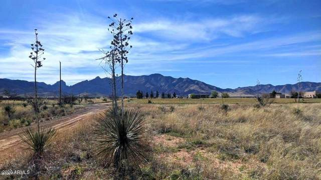 1.66 Acres On Euclid Street, Pearce, AZ 85625 (MLS #6075817) :: The Bill and Cindy Flowers Team