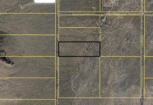 402-68-016 N Owls Butte Trail, Portal, AZ 85632 (MLS #6075862) :: Service First Realty