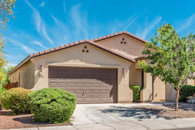 42532 W Cheyenne Drive, Maricopa, AZ 85138 (MLS #6075904) :: The Property Partners at eXp Realty