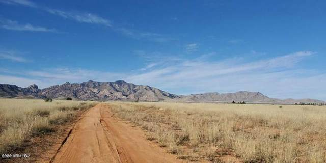 1.65 Acre(2 Lots) On Fargo&Willcox Road, Pearce, AZ 85625 (MLS #6075940) :: Lifestyle Partners Team