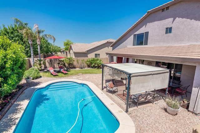 2423 W Park Street, Phoenix, AZ 85041 (MLS #6076024) :: Devor Real Estate Associates