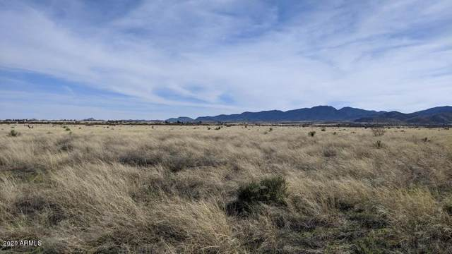 1.17 Acre On Victory Road, Pearce, AZ 85625 (MLS #6076046) :: Service First Realty