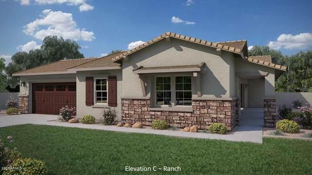 9321 W Villa Hermosa, Peoria, AZ 85383 (MLS #6076070) :: Maison DeBlanc Real Estate