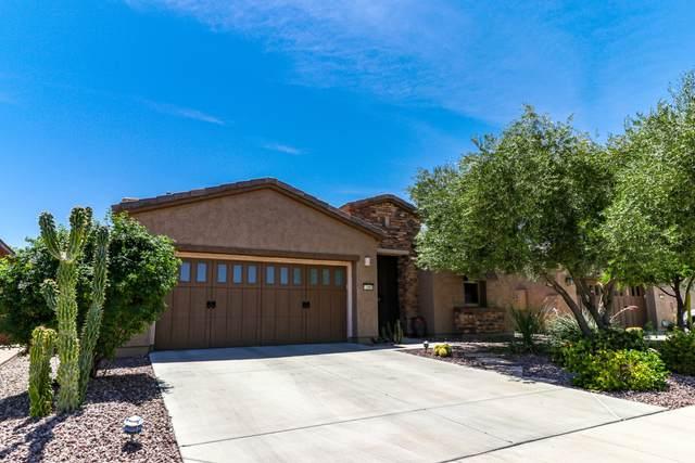 12985 W Plum Road, Peoria, AZ 85383 (MLS #6076100) :: The W Group