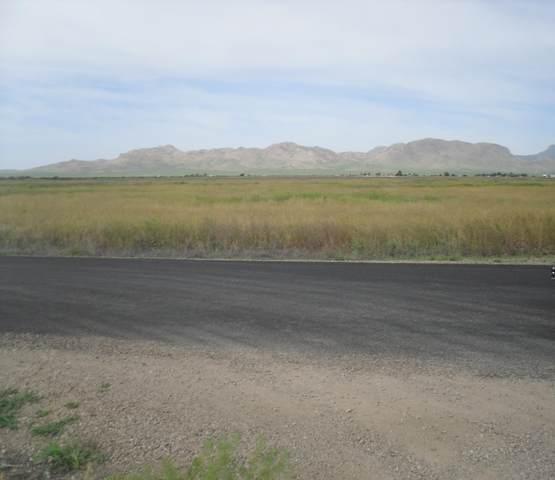 4800 N Poverty Flats Lane, Willcox, AZ 85643 (MLS #6076126) :: Executive Realty Advisors