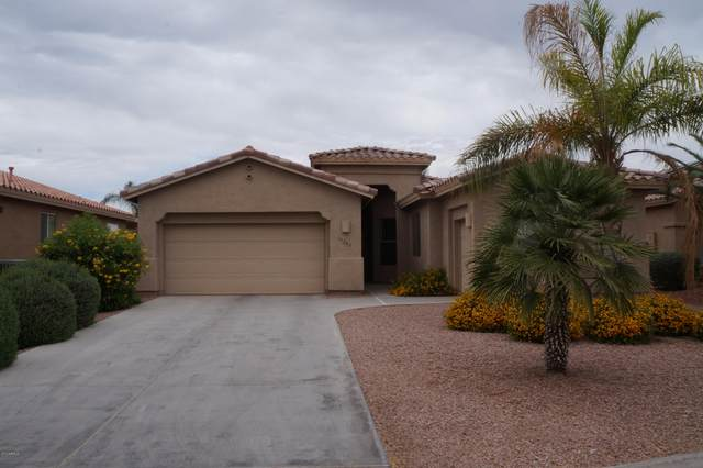 10340 E Cherrywood Court, Sun Lakes, AZ 85248 (MLS #6076154) :: The Carin Nguyen Team