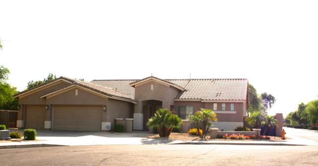 4261 S Danielson Way, Chandler, AZ 85249 (MLS #6076291) :: Klaus Team Real Estate Solutions