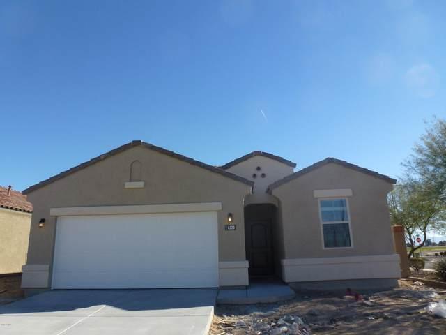 3302 N 309TH Drive, Buckeye, AZ 85396 (MLS #6076321) :: Long Realty West Valley