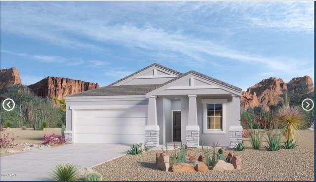 30997 W Earll Drive, Buckeye, AZ 85396 (MLS #6076322) :: Long Realty West Valley