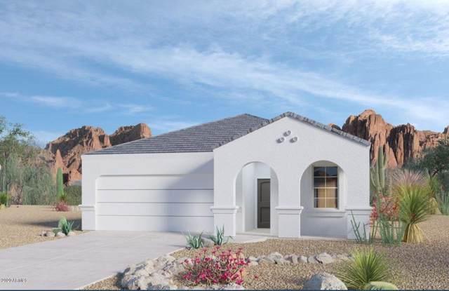 31008 W Earll Drive, Buckeye, AZ 85396 (MLS #6076324) :: Long Realty West Valley
