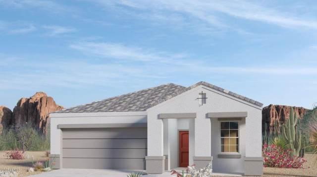 3328 N 309TH Drive, Buckeye, AZ 85396 (MLS #6076325) :: Long Realty West Valley