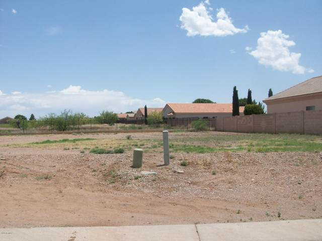 3419 N Placita Herradura, Douglas, AZ 85607 (MLS #6076535) :: Midland Real Estate Alliance