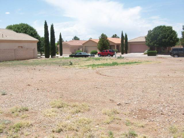 3429 N Placita Herradura, Douglas, AZ 85607 (MLS #6076536) :: Midland Real Estate Alliance