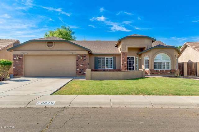 3879 E Shapinsay Drive, San Tan Valley, AZ 85140 (MLS #6076542) :: The Property Partners at eXp Realty