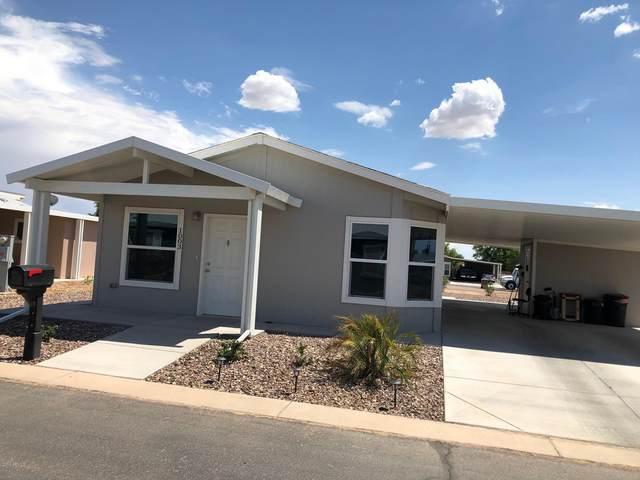 987 E Tee Street, San Tan Valley, AZ 85140 (MLS #6076605) :: Walters Realty Group